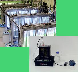 Fotobiorreatores, com sistemas de monitoramento de parâmetros/variáveis abióticas, para pesquisas em plantas/algas