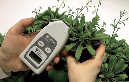Instrumentos portáteis para medições em plantas de fluorescência, clorofila, fluorescência GFP por imagem, refletância, transmitância e absorbância, teor de nitrogênio, índices PRI e NDVI, etc